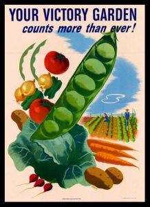 "WWI poster that reads ""Your Victory Garden Counts More Than Ever"" with produce and garden in background"