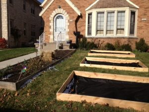 Victory Garden Beds being built in front yard