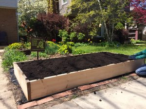 Victory Garden Raised Bed in front yard
