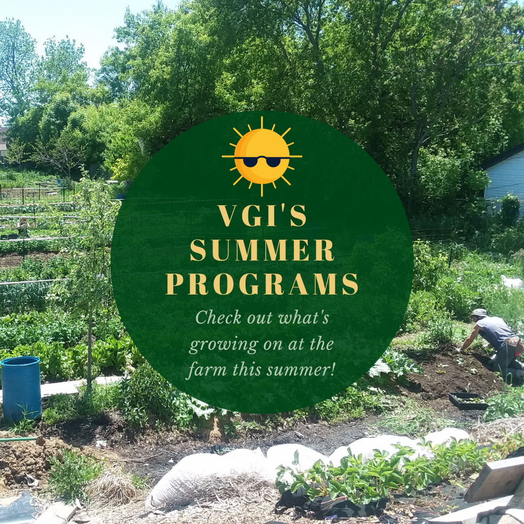 summer programs at the farm for a local food system